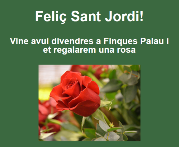 Sant Jordi-foto